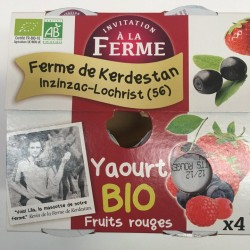 Yaourt bio aux fruits rouges